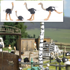 1194 - Ostriches 4/
