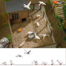1195 - Domestic Geese 8/