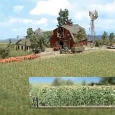1202 - Corn Field 10x10cm