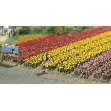 1206 - Tulips 120/