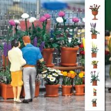 1209 - Flowerpots w/Flowers 20/