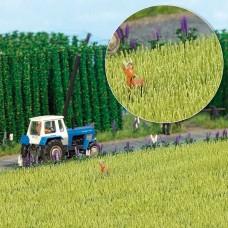 1216 - Barley Field 10x10cm