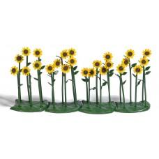 1240 - Sunflowers 24/