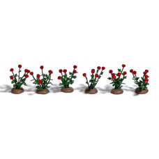 1241 - Roses 36/