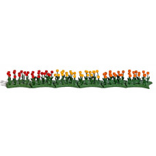 1242 - Tulips 70/
