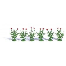 1248 - Poppy Plants 6/