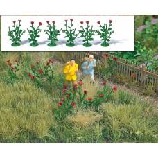 1255 - Poppy Plants