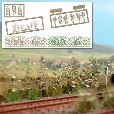 1260 - Late Summer Undergrowth
