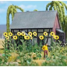 1261 - Sunflower Field