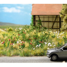 1263 - Poppy and Yarrow Plants