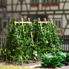 1269 - Bean Plants on Wood Poles
