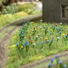 1271 - Summer Meadow Assortment