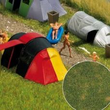 1303 - Grndcvr Summer Grass