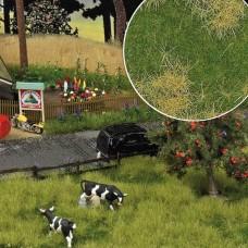 1307 - Grndcvr Spring Mdw Grass