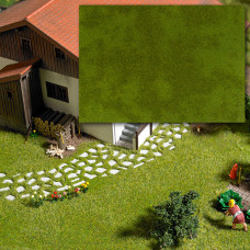 1319 - Groundcover Pad Summer