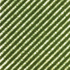 1343 - Grass Strips Verge/Summer