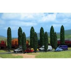 6239 - Poplar trees          10/