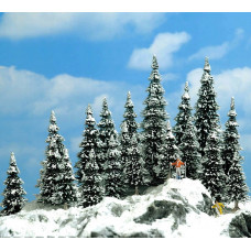 6566 - Snow covered Pines    20/