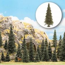 6577 - Pine tree w/roots set 40/