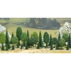 6590 - Decid/pine tree asrt  35/