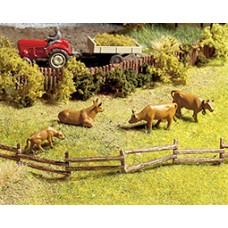 Noch  13030 - 2-Slt Pasture Fnc 1/2x40