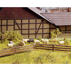 Noch  13040 - 3-Slt Pasture Fnc 1/2x40