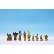 Noch  14012 - Assrtd Flower Pots #2 9/