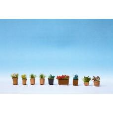 Noch  14031 - Assrtd Flower Pots #3 9/