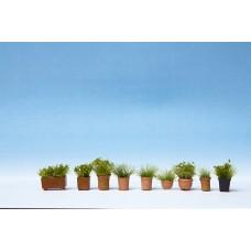 Noch  14032 - Assrtd Flower Pots #4 9/
