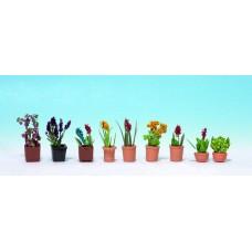 Noch  14060 - Ornamental Plants #1 9/