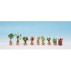 Noch  14082 - Ornamental Plants #5 9/