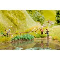Noch  14104 - Water Knotgrass 20/