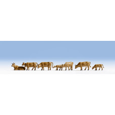 Noch  15722 - Cows tan   7/
