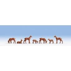 Noch  15740 - Roe Deers 7/