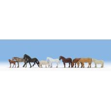 Noch  15761 - Horses 9/