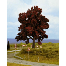 Noch  21730 - Copper-beech 14cm high