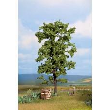 Noch  21780 - Lime tree 7 1/4
