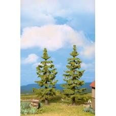 Noch  21831 - Spruce 13 & 14-1/2cm 2/