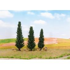 Noch  21998 - Cypress Trees 3/