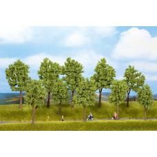 Noch  24200 - Tree Sprng 100-140mm 10/