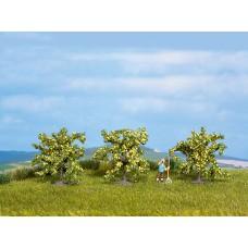 Noch  25115 - Lemon Tree 1-9/16