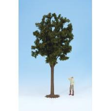 Noch  68030 - Deciduous tree 13-1/2