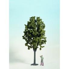 Noch  68032 - Deciduous Tree 15-3/4