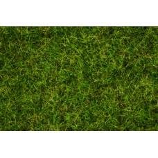 Noch  7072 - Grass Blend Summer Meadow