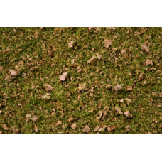 Noch  7075 - Grass Blend Alpine Meadow